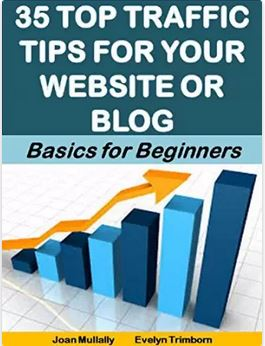 35 Top Traffic Tips For Your Website or Blog: Basics For Beginners