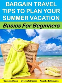 Bargain Travel Tips to Plan Your Summer Vacation: Basics for Beginners