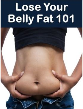 Lose Your Belly Fat 101
