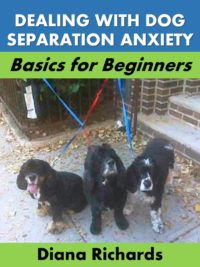 Dog Separation Anxiety FAQs