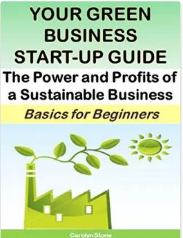Your Green Business Start-Up Guide:  The Power and Profits of a Sustainable Business