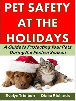 Pet Safety at the Holidays: A Guide to Protecting Your Pets During the Festive Season
