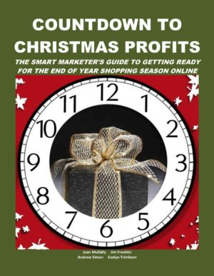 Countdown to Christmas Profits