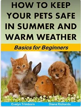 Protect your pets in the summer weather