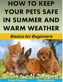 How to Keep Your Pets Safe in Summer and Warm Weather: Basics for Beginners